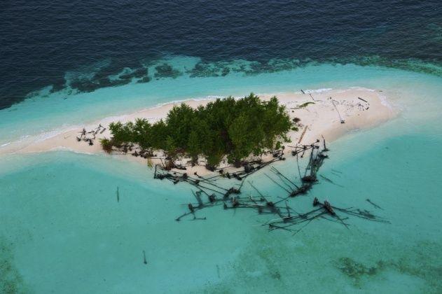 YannArthusBertrand2.org - Fond d écran gratuit à télécharger || Download free wallpaper - Archipel des Raja-Ampat - Arbres déracinés sur l'île de Wai, Papouasie Occidentale, Indonésie (0°41' S - 130°25' E).