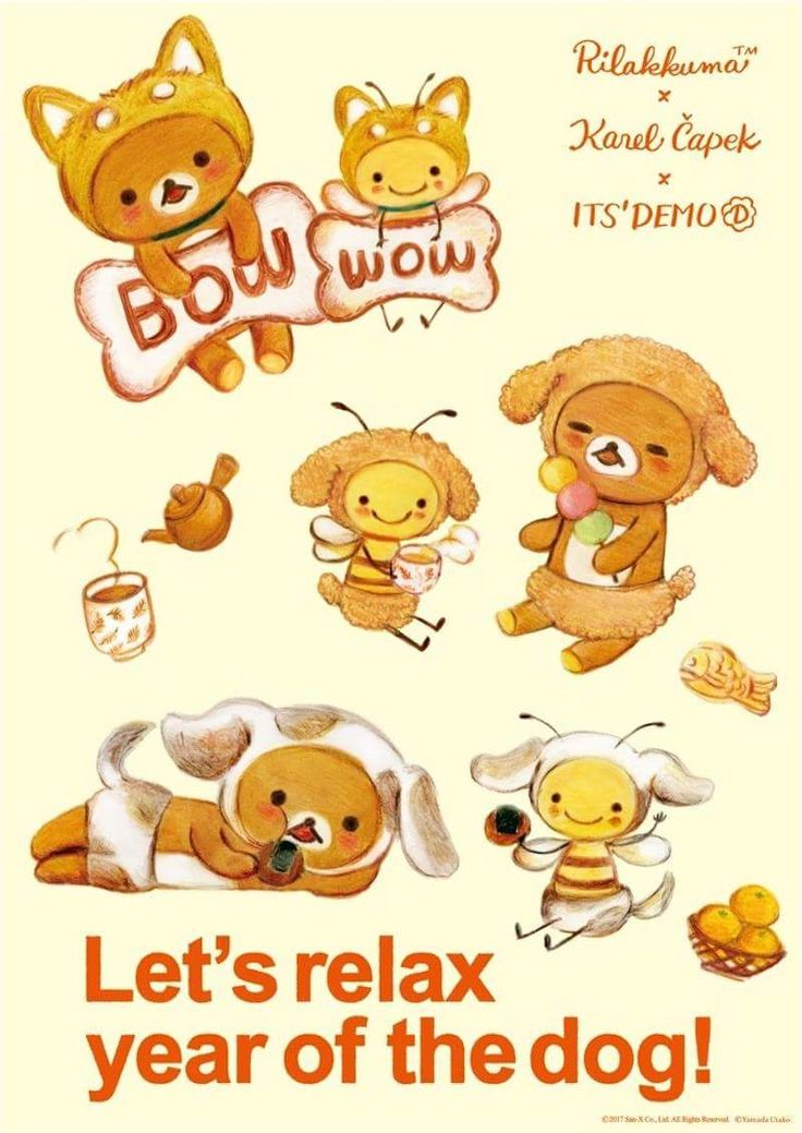 Best Rilakkuma Anime Adorable Dog - 683896c27580986fbc050876bc720557  Gallery_304998  .jpg