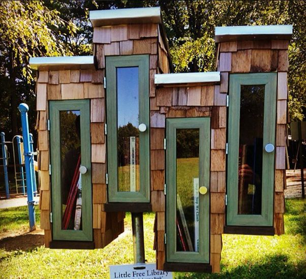 What an awesome Little Free Library!