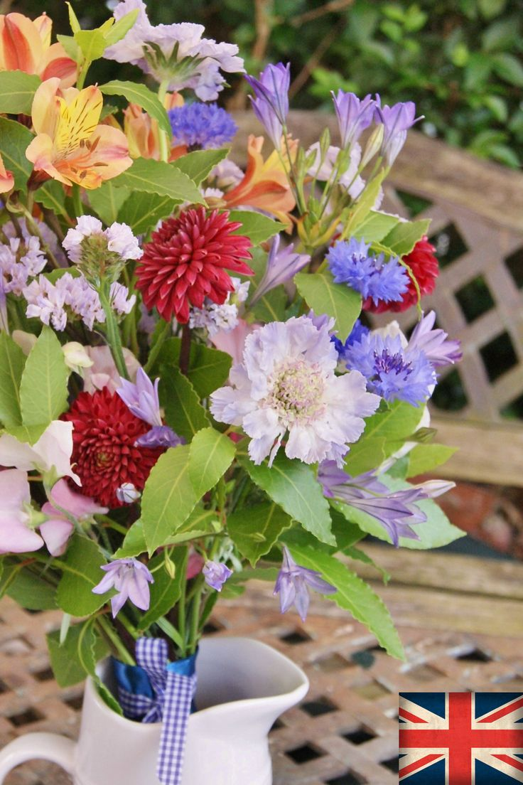 DAHLIA, SCABIOUS, BRODIAEA, ALSTROEMERIA | Florissimo, Shropshire - Flowers for weddings, events and businesses in Shropshire and beyond. British-grown dahlia generally avail Jul-Oct, scabious Jun-Oct, brodiaea May-Jun, alstroemeria year-round