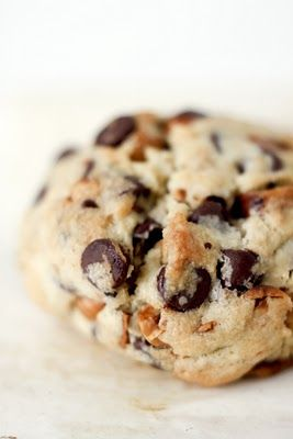 Chocolate Chip Hazelnut Cookies. These appear to be HUGE and stuffed full of my favorite nut. Perfection!