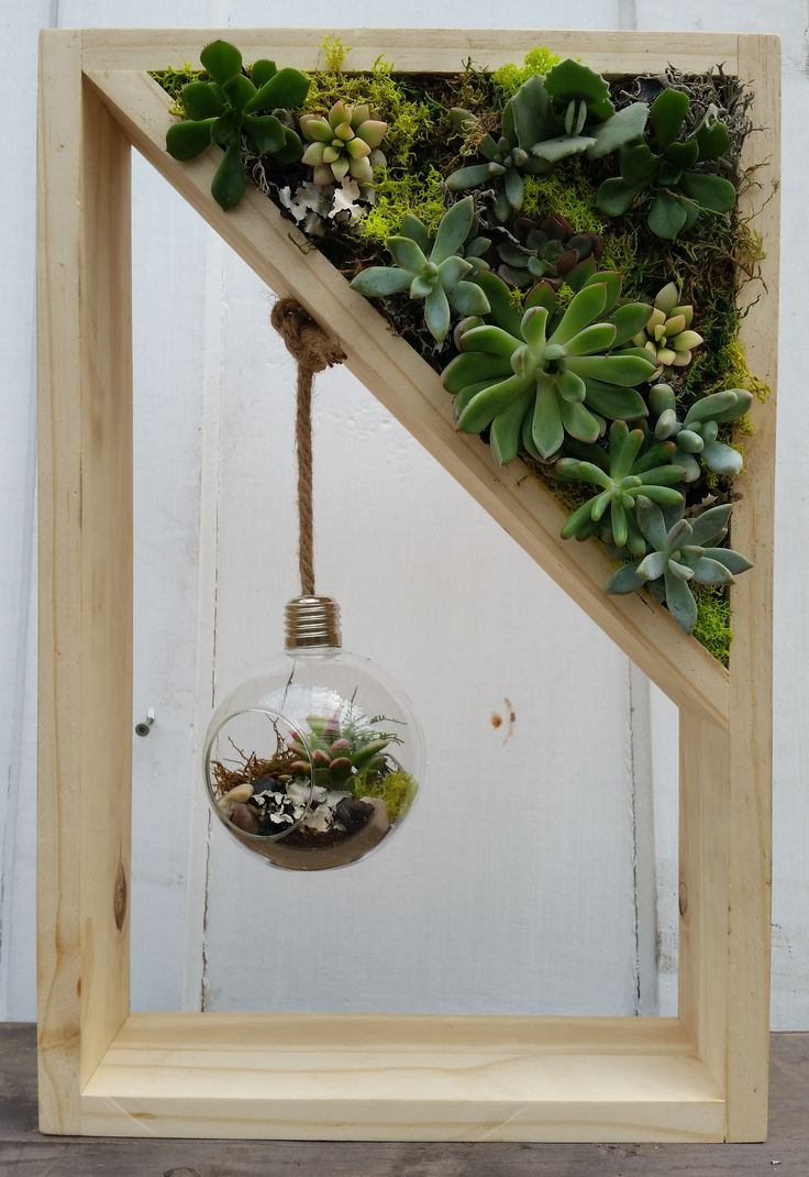 "Succulents are all the rage and with good reason! They are beautiful, interesting, versatile, long lasting plus they look stunning planted alone or as companions. Choose from a variety of juicy succulents to design an exquisite living art shadow box providing a perfect touch of colour, texture and style to enhance your home.  A hanging clear glass terrarium with a plump succulent adds an element of  interest to this amazing masterpiece. This handmade wooden shadow box measures 18""H x 12""W…"