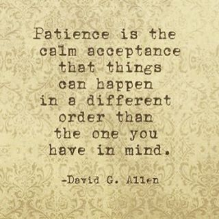 Patience is the calm acceptance that things can happen in a different order than the one you have in mind.  ❤️