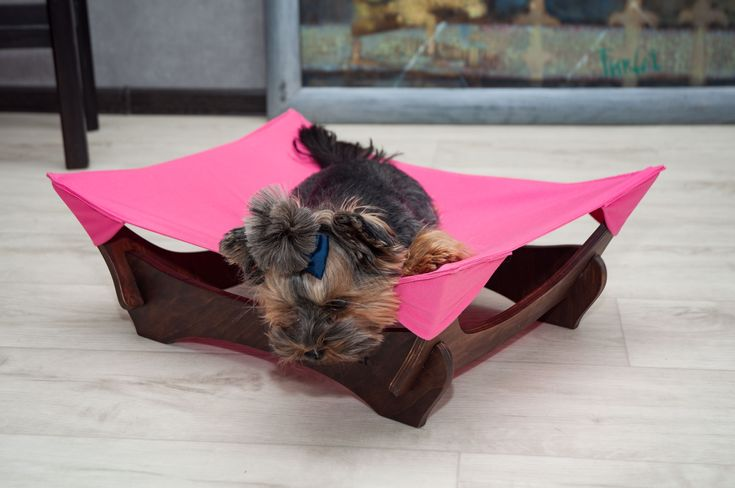 #CatHammock #FunnyPet #yorkie #DogHammock #Catbed #DogBed #Cat #Dog Personalized Cat Hammock, Cat Hammock, Dog Hammock, Dog Bed, Cat Bed, Luxury Cat beds, Cat Lounge, Cat Furniture, Dog Lounge, Kitty Hammock