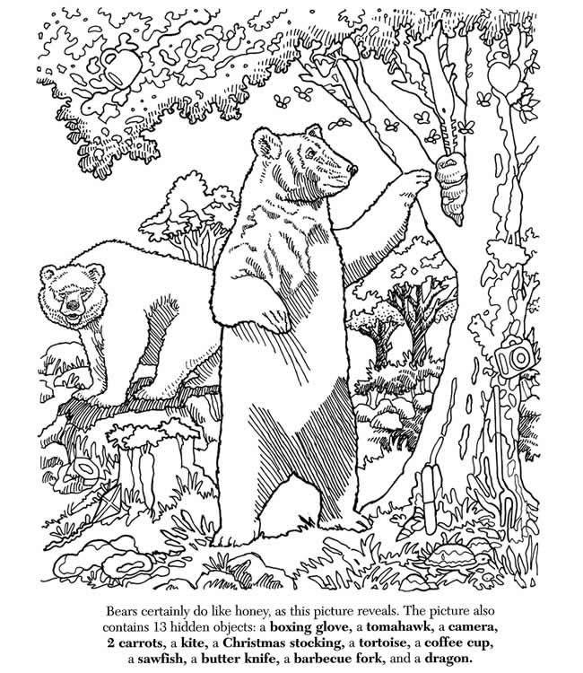 Hidden Pictures  PUZZLE 1 Welcome to Dover Publications ANSWERS ON BOARD ZZZ EDIT