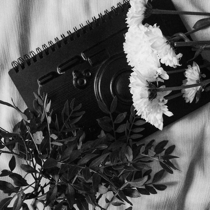 Да не о том думай что спросили а о том - для чего? Догадаешься - для чего тогда и поймешь как надо ответить.  Максим Горький  #vsco #vscocam #vscorussia #vscominimal #minimalism #bnw #minimal #monochrome #unlimitedminimal #insta_bw #bw #blackandwhite #bnw_society #nocolor #minimalismlife #bwlife #bw_lover #simple #blackandwhiteonly #bwoftheday #lessismore  #минимализм #чернобелое #чб #философия #психология #цитаты #фотограф #блокнот #растения