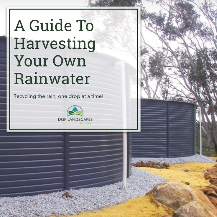 A Guide To Harvesting Your Own Rainwater   DGF Landscapes Mackay