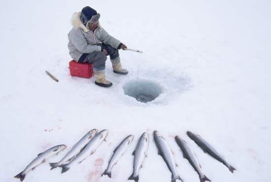 Traditionnel Inuit (Esquimau) pêche sur la glace près de Pond Inlet, île de Baffin, au Nunavut, Can.