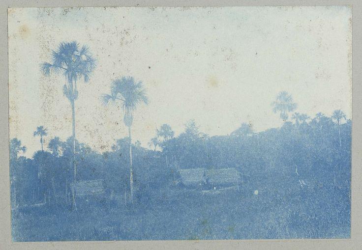 anoniem | Patrick-savanna, attributed to Hendrik Dooyer, 1906 - 1913 | Verschillende huizen aan de rand van het bos, volgens het onderschrift betreft het de Patrick-savanna. Onderdeel van het fotoalbum Souvenir de Voyage (deel 1), over het leven van de familie Dooyer in en rond de plantage Ma Retraite in Suriname in de jaren 1906-1913.