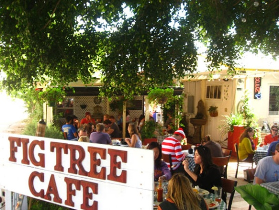 Restaurant of the Moment: Fig Tree Cafe | Coastal Premier Properties