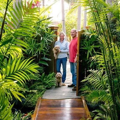 king, queen, and pygmy date palms tower above cycads, plumerias, variegated schefflera, yellow gingers, red ti plants, and bromeliads that include the showy Billbergia pyramidalisLeafy plants - Tropical Plants Retreat - Sunset.com