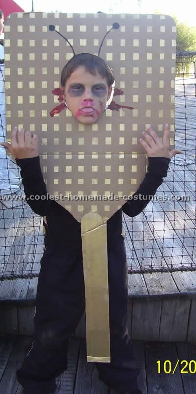 Ideas for Cheap Costumes. The fly is ugly but the website is awesome!