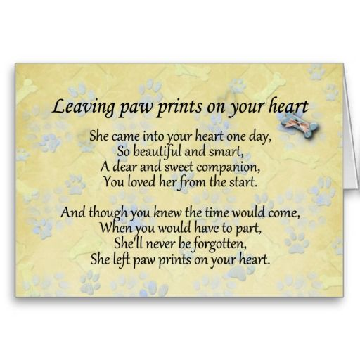 http://rlv.zcache.com/pet_sympathy_card_for_pet_loss_leaving_paw_print-r991f9043ae5344d1bda9ff136de26cd6_xvuak_8byvr_512.jpg?bg=0xffffff