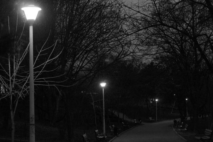 park alley by mircea.fotograf.az