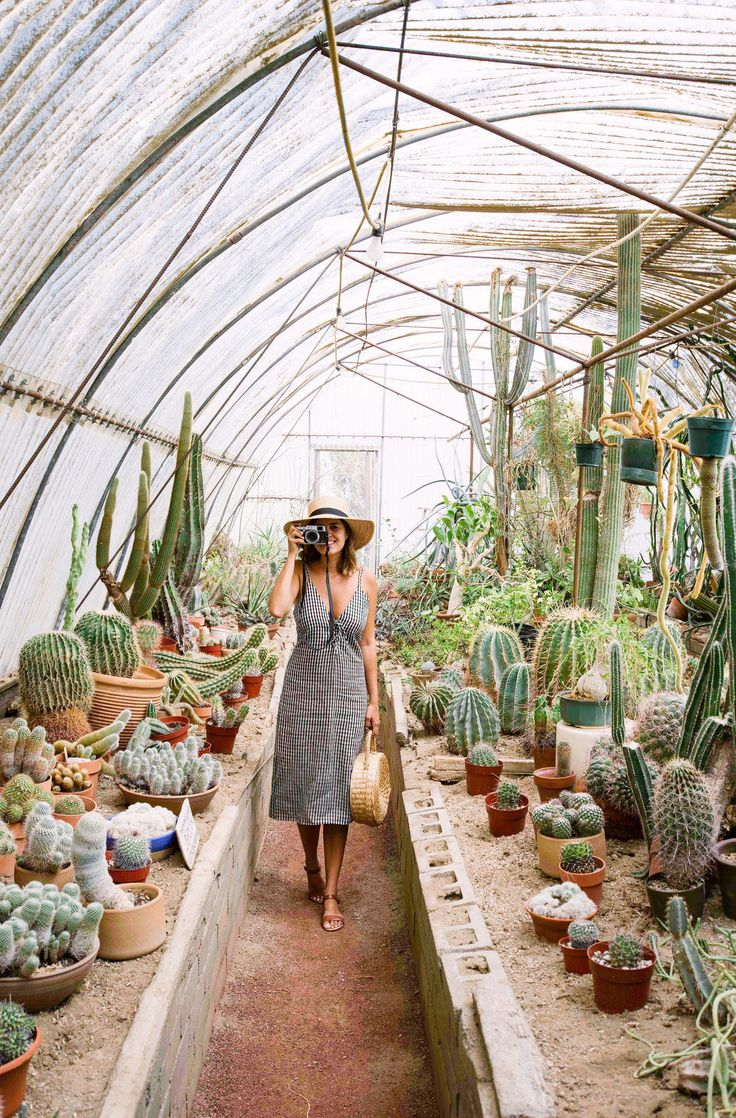 Taking the Simple Sandal for a spin at the Palm Springs Cactarium. This and other shoes to pack on your next trip over on the blog