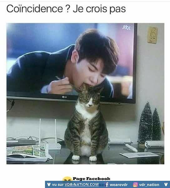 attention la télé vas te manger !!