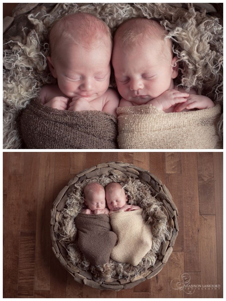 Twin newborn session twin boys newborn rustic natural shannon lankford photography