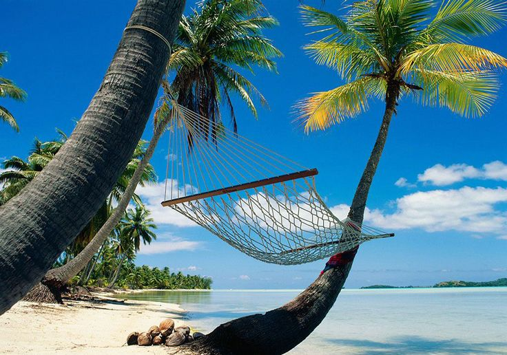 Time for yourselfDreams, Playa Del Carmen, Hammocks, Palms Trees, Naps Time, Places, Beach, Maui Hawaii, Honeymoons Destinations