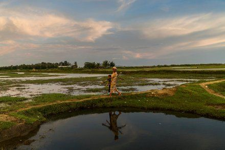 No Such Thing as Rohingya: Myanmar Erases a History