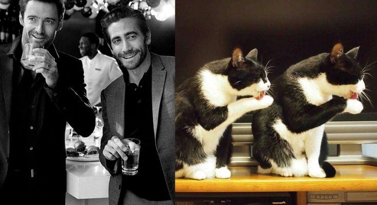Jake Gyllenhaal (a destra) con Hugh Jackman