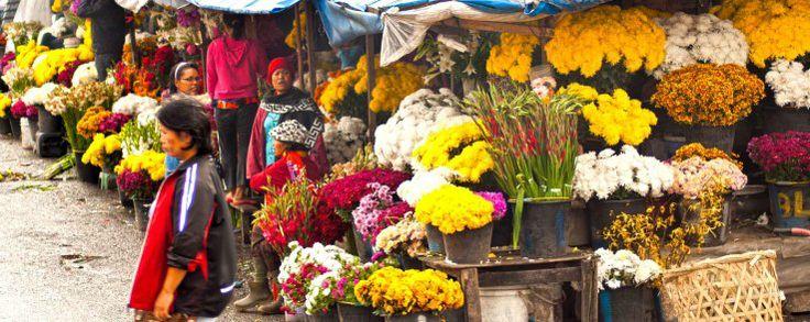 Flower Market, #Berastagi, #Karo, #Indonesia
