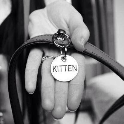 Bdsm Kittens Toys