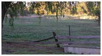 Old Banyule Farm Cattle Yards, 2001
