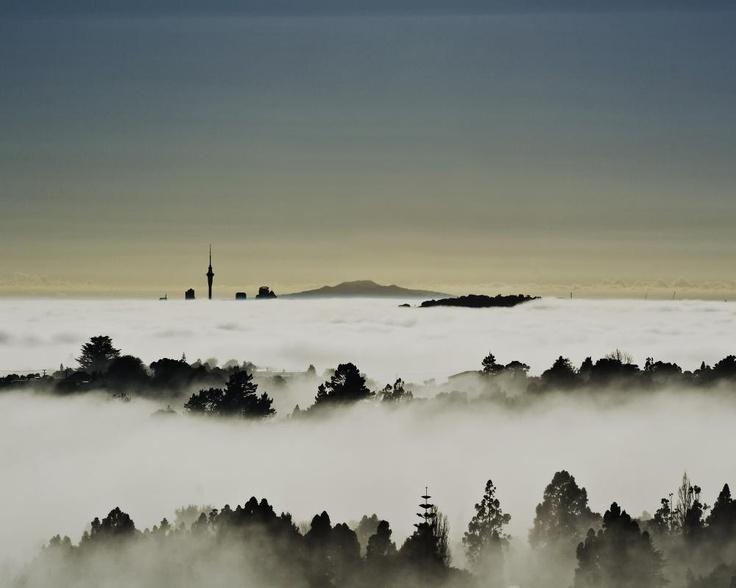Auckland in fog from Titirangi (2)