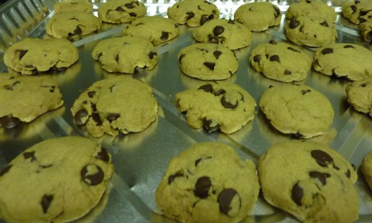 AMAZING Passover Chocolate Chip Cookies | Kosher In The Kitch!