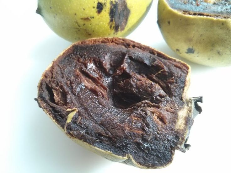 Eureka - Tasting a chocolate pudding fruit (Black Sapote) - all the taste of chocolate without the sugar