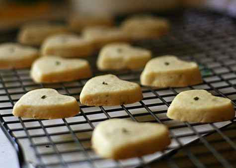 itty bitty lemon-thyme shortbread cookies. all of the mini cookies on ...