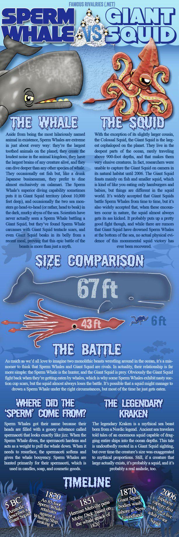 Famous Rivalries Sperm Whale vs Giant Squid