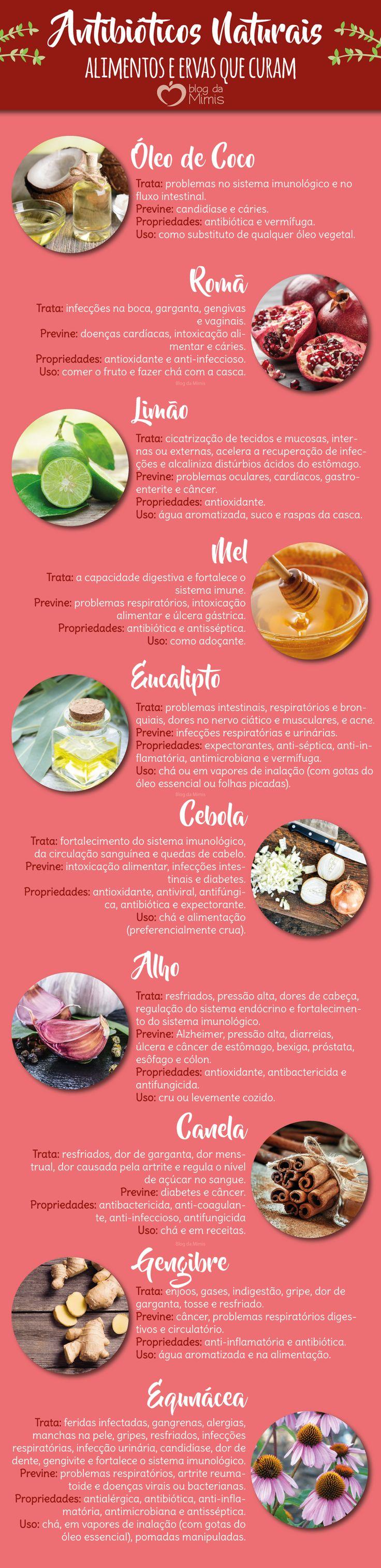 Antibióticos naturais: alimentos e ervas que curam - Blog da Mimis #antibiótico #alimentos #ervas #cura #saudável #natural
