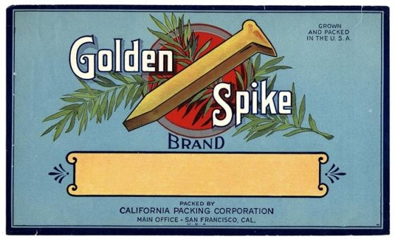 """""""Golden Spike"""" refers to the final spike that joined the Union Pacific Railroad and the Central Pacific Railroad, completing the first Transcontinental Railroad on May 10, 1869."""