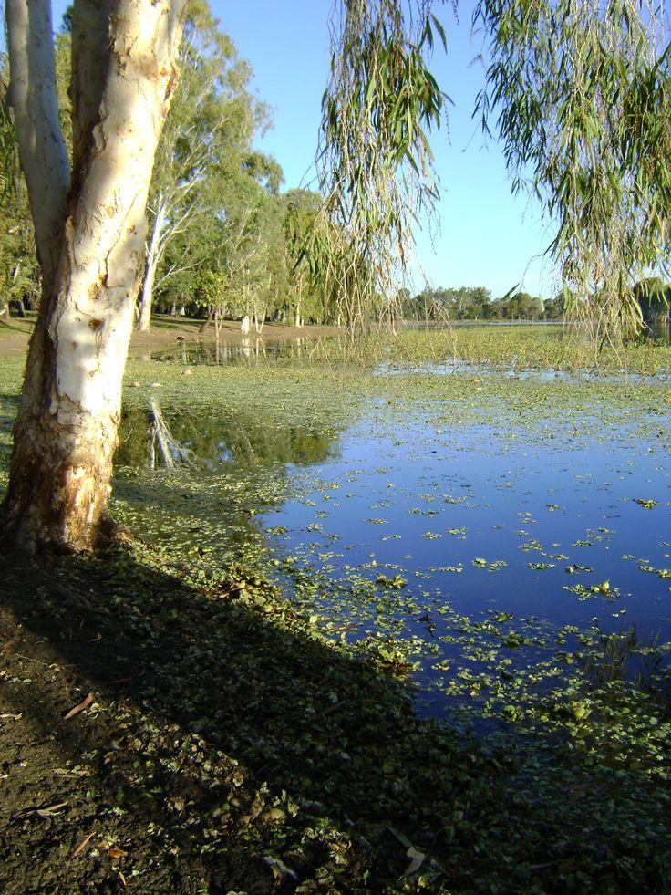 Rockhampton Australia. Pic taken by myself.