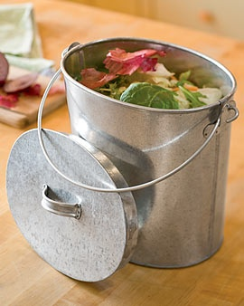 Our composting pail. Even without the liners, it doesn't stink. Love it!