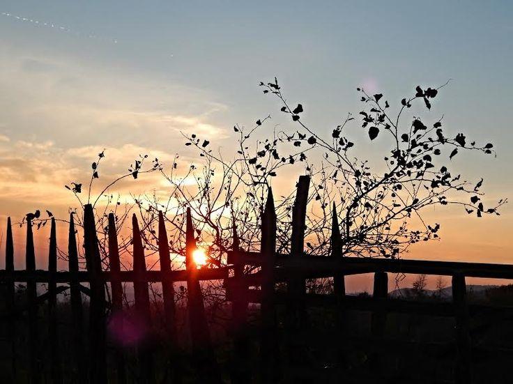 Autumn Sunset by Ada Ivanov on 500px