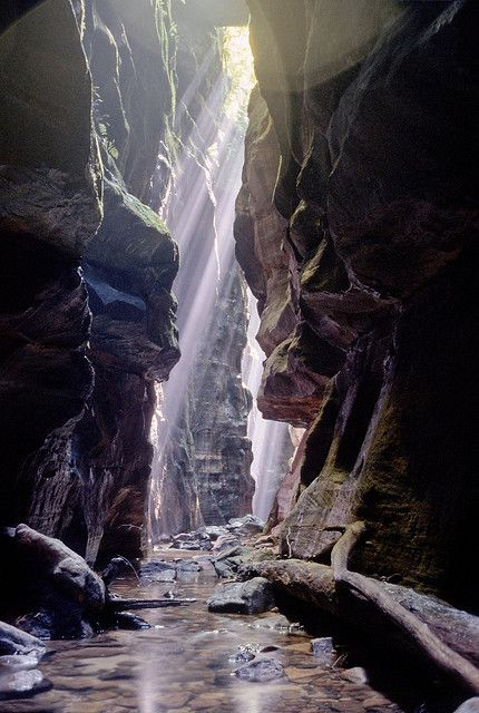 Claustral Canyon, Blue Mountains, Australia.