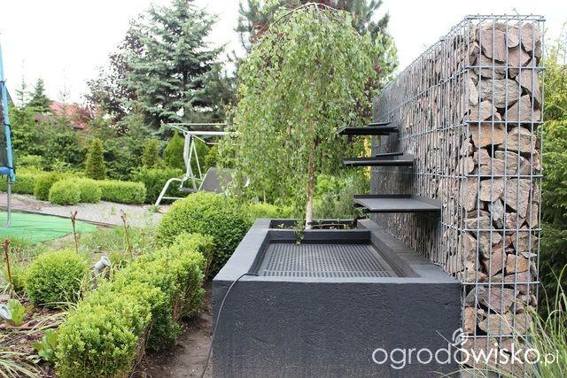 Ogród Sylwii od początku cz.II - strona 1026 - Forum ogrodnicze - Ogrodowisko