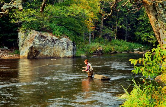 33 Best Images About Adirondack Fly Fishing On Pinterest