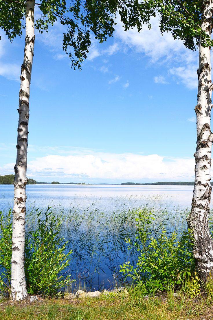 FINLAND DAY 7 - PUNKAHARJU