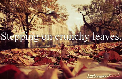I will walk out of my way to step on a crunchy leaf. -amr :]: Pumpkin Spices, Fall Leaves, Favorite Things, Trav'Lin Lights, Christmas Holidays, Autumn Leaves, I Love Fall, Crunchi Leaves, Photo