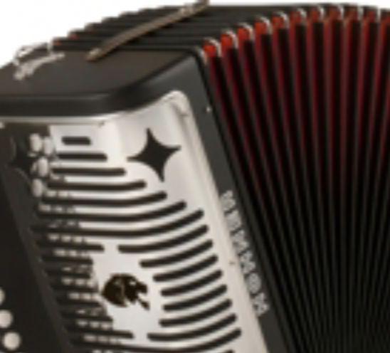 The hohner panther http://www.musiciansfriend.com/folk-traditional-instruments/hohner-ha-3100-panther-gcf-diatonic-accordion is a 3 row diatonic accordion with double strap brackets, 31 treble keys, 12 bass/chord buttons, 2 sets of treble reeds, and plays in G, C, and F. It also weighs 9 pounds. Musician's Friend also sells many other instruments at decent prices. You can also purchase different warranty plans to suit your needs. Check them out today to see what deals they have to offer.