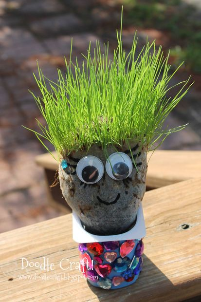 Picture of Haircut Chia Pet Grass Heads!  Great for Summer Break!