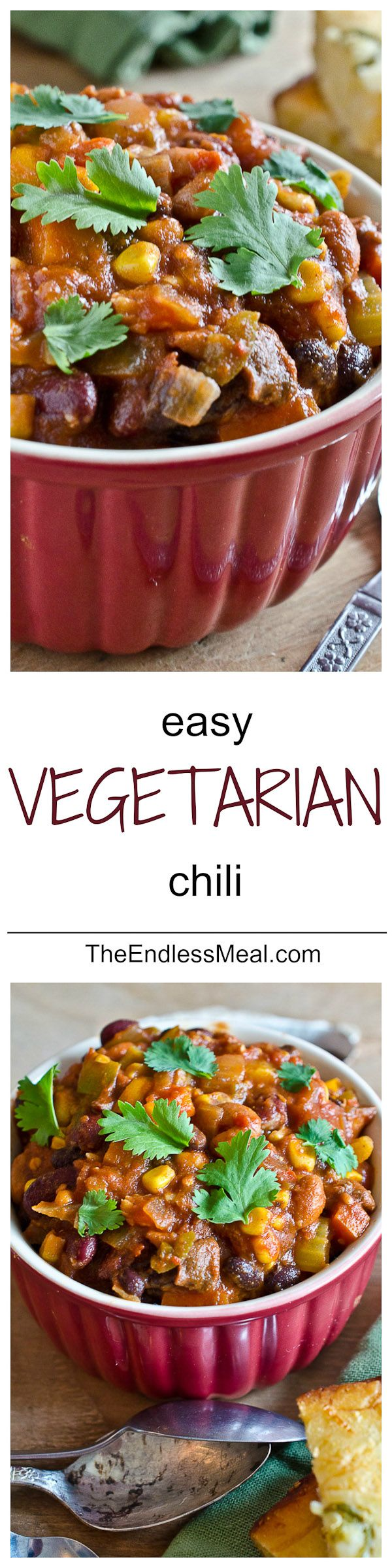 Easy Vegetarian Chili Recipe I added vegetarian meat and it was much improved.  Very good then.