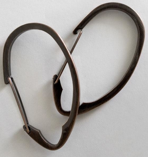 http://www.houzz.com/photos/29885932/Cinch-Shower-Hooks-Set-Of-12-Oil-Rubbed-Bronze-traditional-shower-curtain-rings