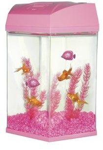 25 best ideas about hexagon fish tank on pinterest fish for Aquarium boule 20 litres
