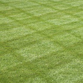 If you want to try a new lawn striping technique, follow these easy steps.