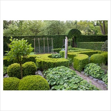 59 best images about knot gardens on pinterest gardens for Herb knot garden designs