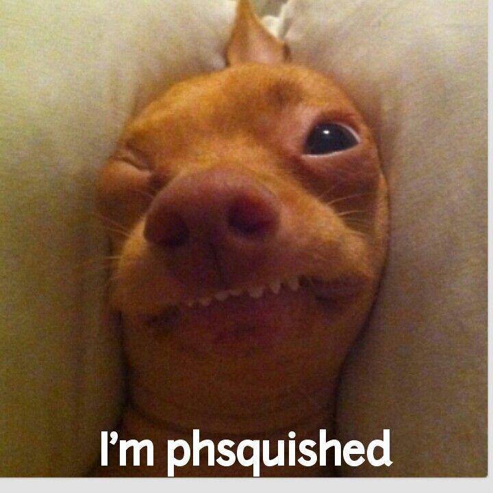 163 besten Phteven (Tuna) Bilder auf Pinterest | Lustige ... - photo#19